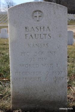 Basha Faults