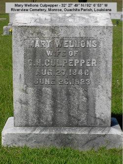 Mary Wellons <I>Wellons</I> Culpepper
