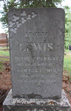 Olive Elizabeth <I>Perkins</I> Lewis
