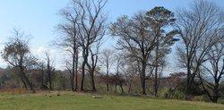 Kincaid Family Burying Ground (Defunct)