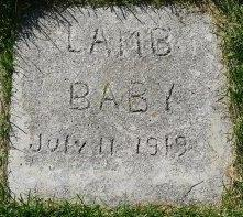 Baby Girl Lamb