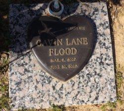 Gavin Lane Flood