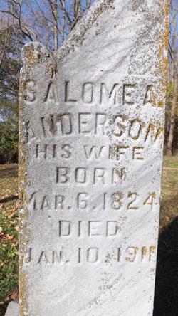 Salome A. <I>Harshbarger</I> Anderson