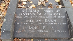 Evelyn M. A. Bush