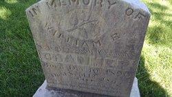 William Reed Cranmer