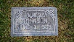 Glen Wesley Johnson