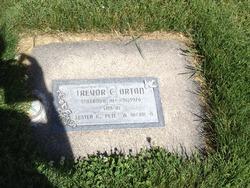 Trevor C Orton
