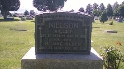 Niels P Nielson