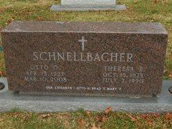 Theresa Elizabeth <I>Renner</I> Schnellbacher