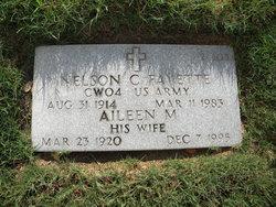 Nelson C Fayette