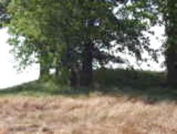 Shine Turner Indian Mound