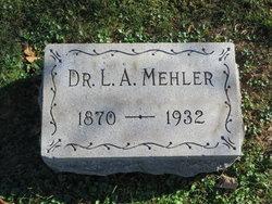 Louis A Mehler 1872 1932