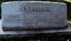 Capt George Washington Williams