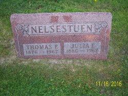 Thomas Peter Nelsestuen