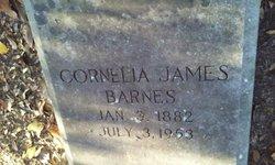 Cornelia <I>James</I> Barnes