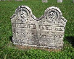 William Colborn Robertson