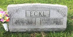 Charlotte Ellen <I>Wolff</I> Eckl