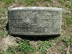 Oscar W. Nestel