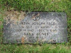 Sara Agnes Fegel