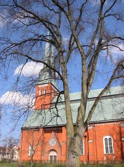 Wexiow Cathedral (Växjö domkyrka)