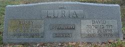 David Luria