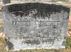 Lucy Jane <I>Austin</I> Johnson