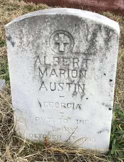 Albert Marion Austin