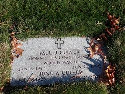 Paul J Culver
