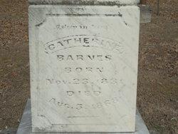 Catherine <I>Birkhead</I> Barnes