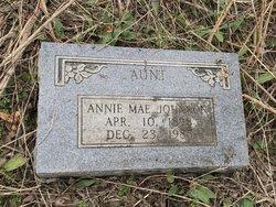 Annie Mae <I>Clayton</I> Johnson