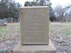 Alice <I>Vance</I> King