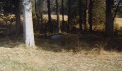 Herndon - Rucker Cemetery