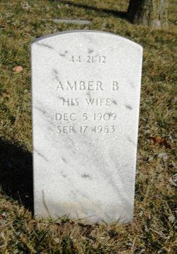 Amber B Garrett