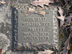 Melissa S Heiney