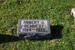 Robert J. DeMuesy