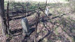 Hamby-Adams Cemetery