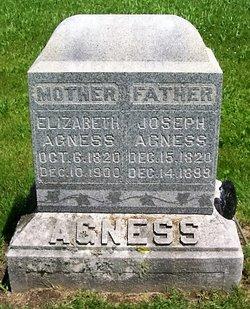 Elizabeth <I>Harnden</I> Agness