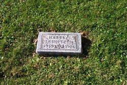 Harry J. Schiltz, Jr