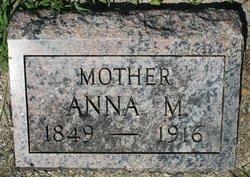 Anna M Johanson