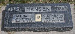 Maria Elizabeth <I>Fechser</I> Hansen