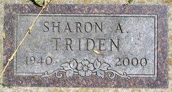 Sharon A Triden