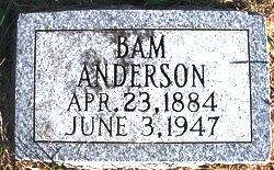 Viona Bam <I>Jones</I> Anderson