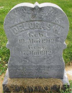 Deloras H Marquardt