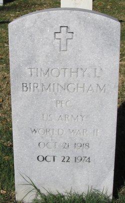 Timothy L Birmingham