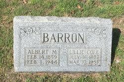 Albert Monroe Barron