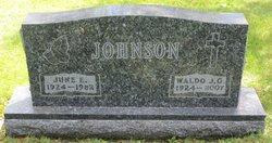 June E Johnson