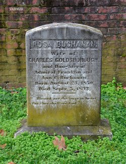 Rosa <I>Buchanan</I> Goldsborough