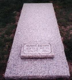 Agnes Elizabeth <I>Kirchner</I> Ellison