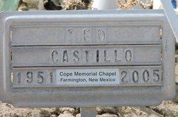 Ted Castillo
