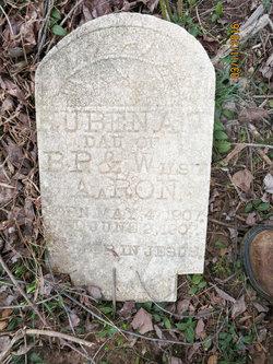Ruben Ann Aaron